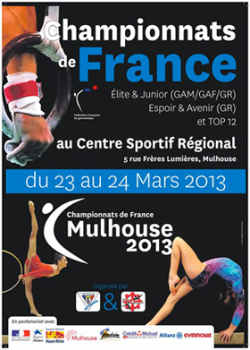 Championnats de France de gymnastique 2013