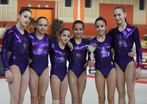 L'ASCM Toulon de gymnastique 2013
