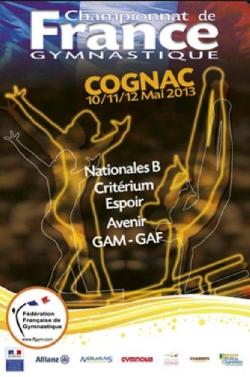 Championnat de France de gymnastique 2013 à Cognac